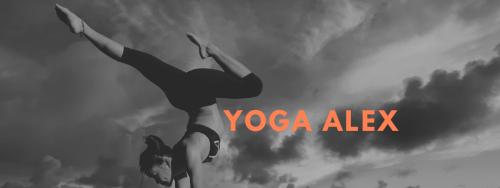 yoga-alex